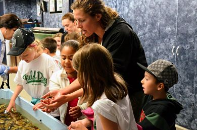exhibits-touch-tank-larger