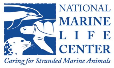 National Marine Life Center