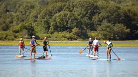STAND-UP PADDLE BOARDING_opt