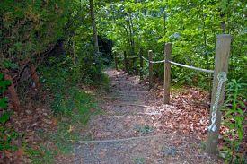 outreach-trailwalk-series-3