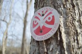 chaypee-woods-trail