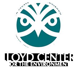 logo-2019-mobile